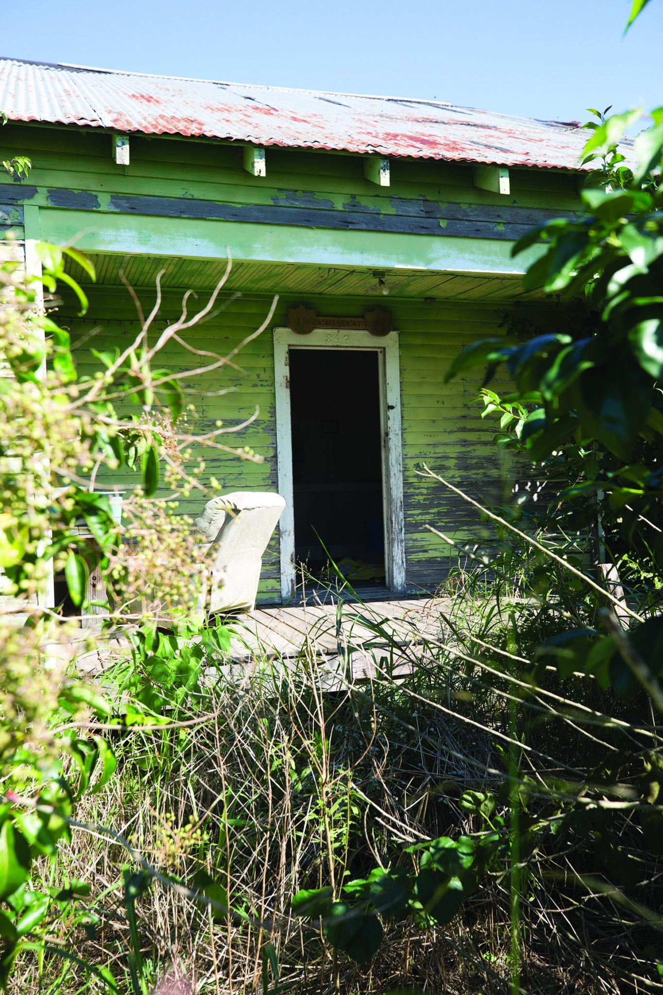 10-27-2018-sugar-cane-story-day-5-746.jpg
