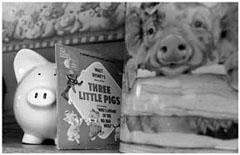 Three Little Pigs Bar-B-Q