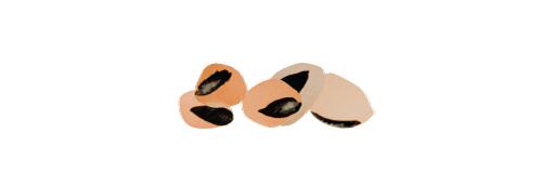 black-eyed-peas-3
