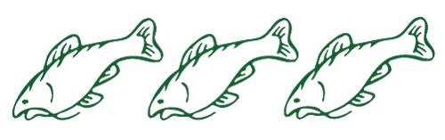 Catfish-motif