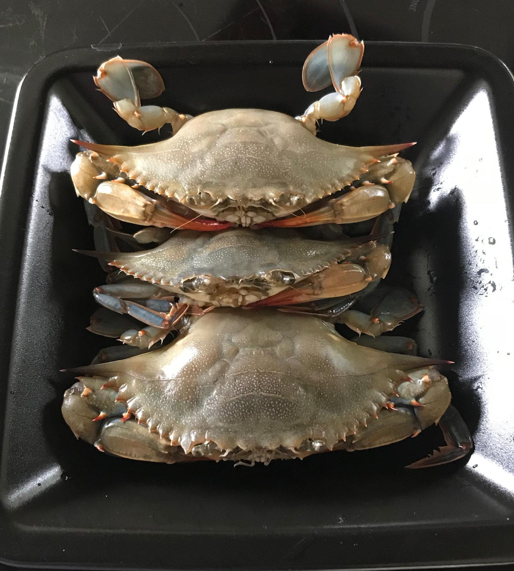 gravy-soft-shells-await-their-fate.jpg