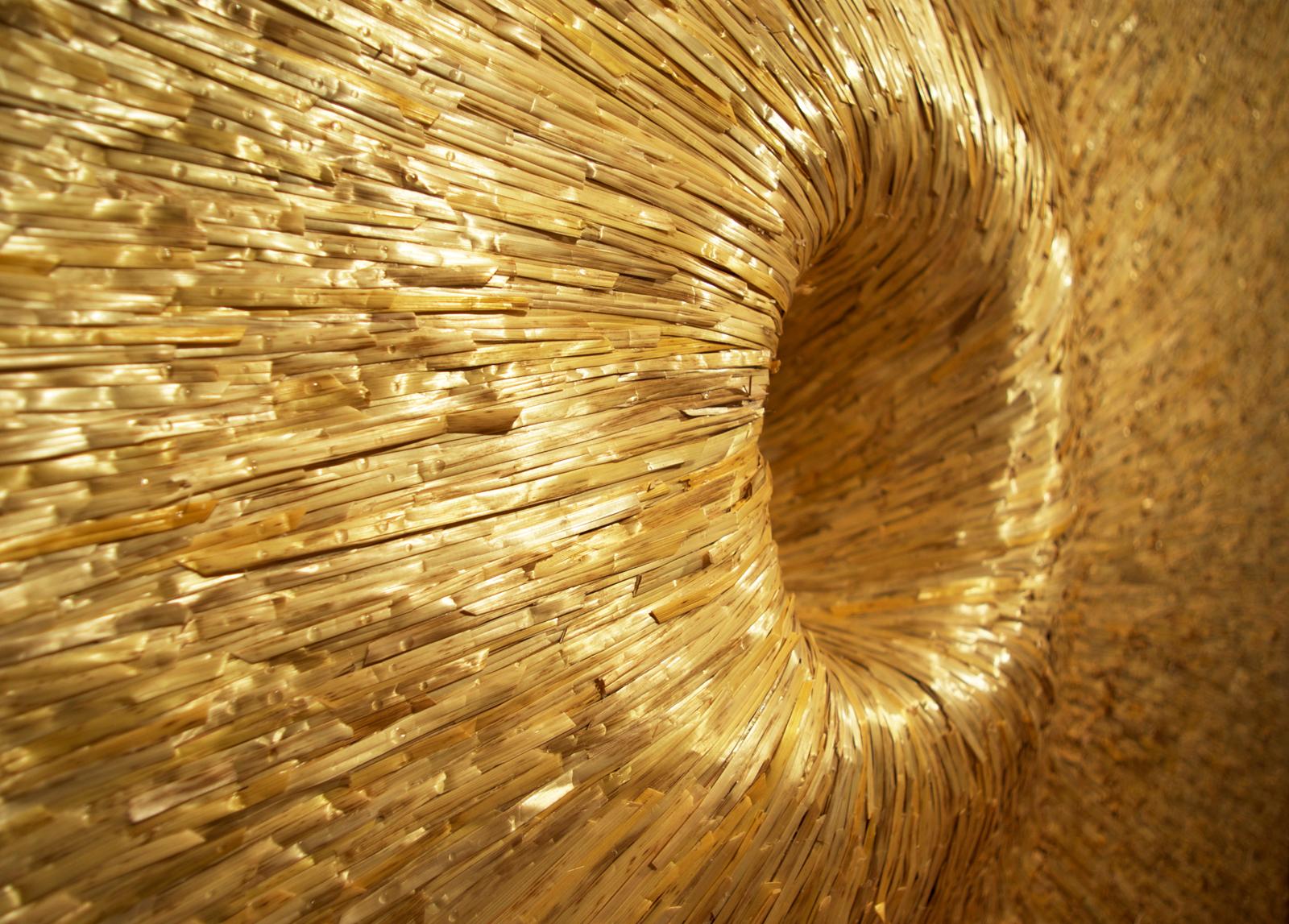 shea-hembrey-radius-detail