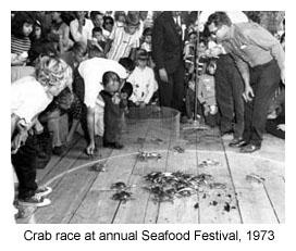 Seafood & Honey - Vintage Apalachicola